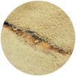 Gladiator Carpet Buy Carpets Online At Scs