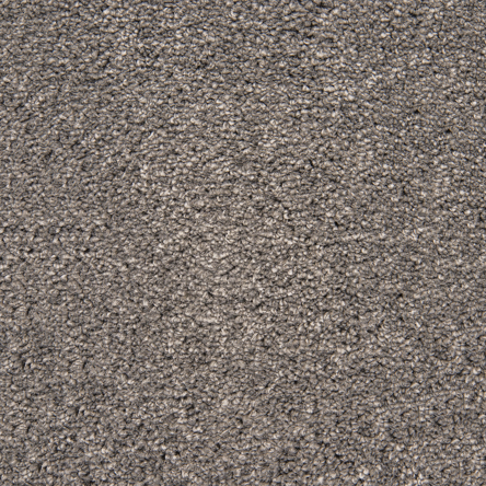 Stainfree For Life Secret Affair Carpet, 01 Ashen Grey, swatch