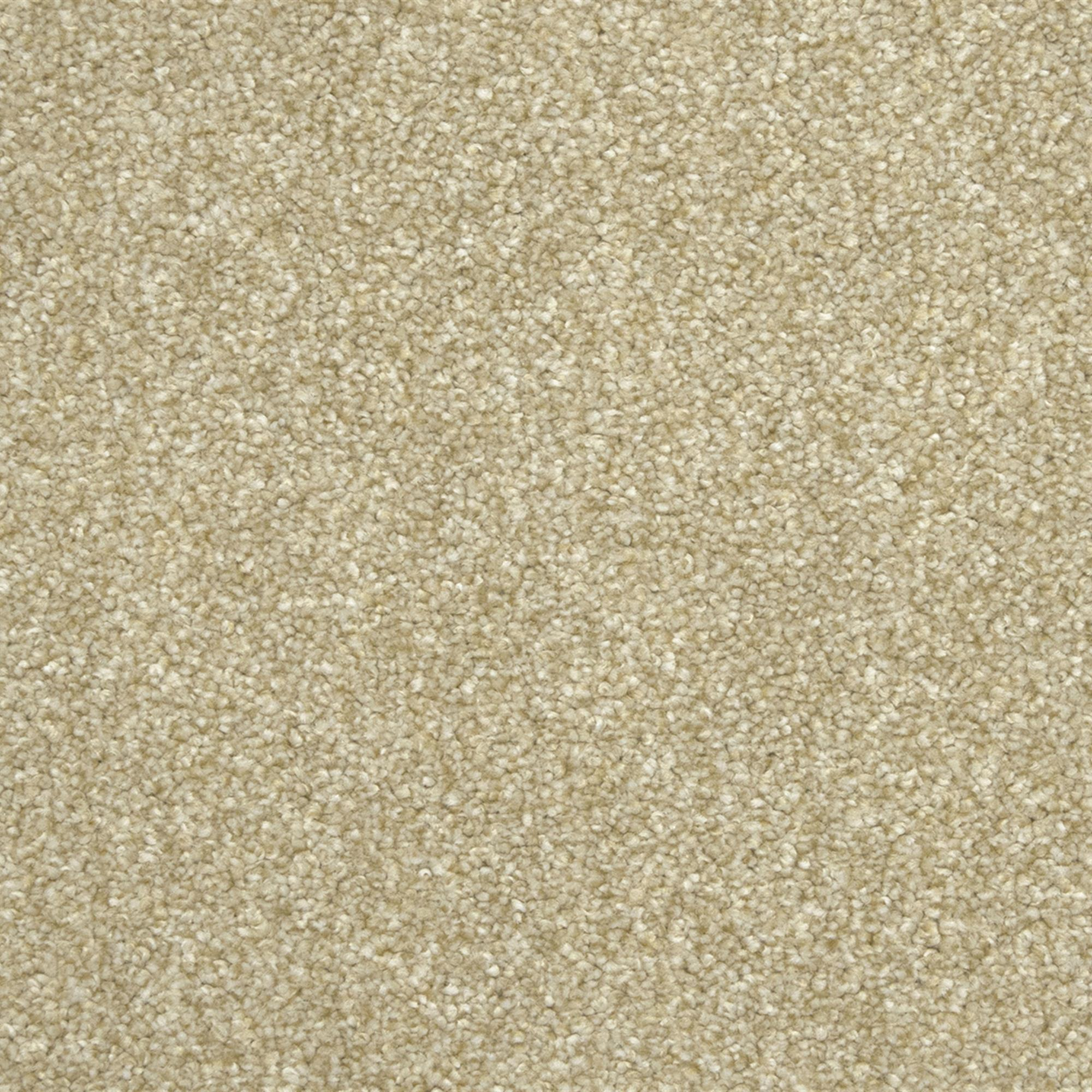 Vivendi Equinox Carpet, 35 Oatcoak, swatch