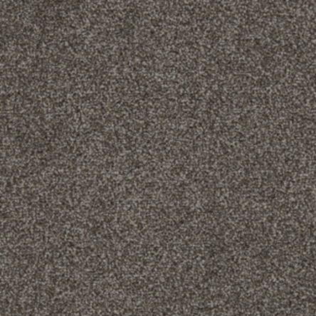Stainfree Rustique Saxony Carpet, Hopsack, swatch