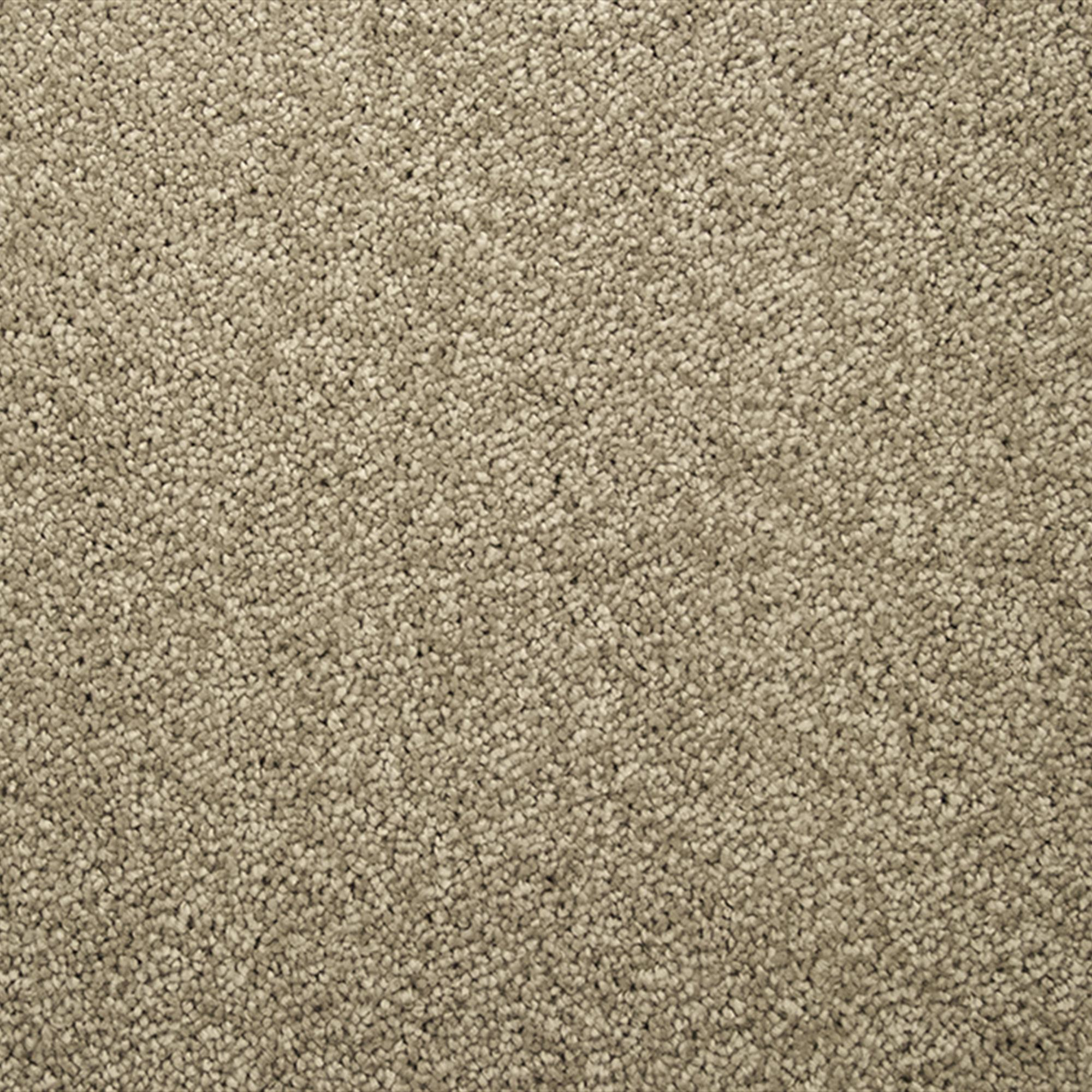 Signature Eloquence Carpet, 941 Flax, swatch