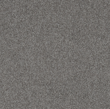Stainfree Rustique Saxony Carpet, Greystone, swatch