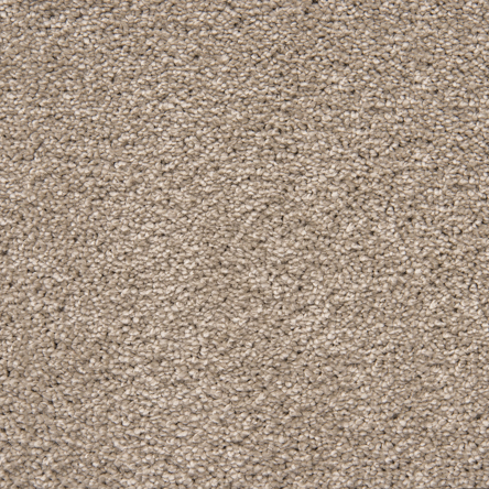 Stainfree For Life Secret Affair Carpet, 10 Warm Cappuccino, swatch