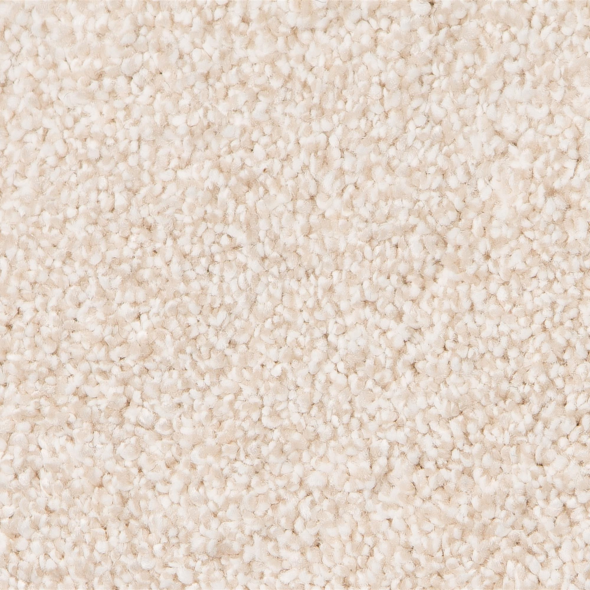 Living Charming Carpet, 69 Onyx, swatch