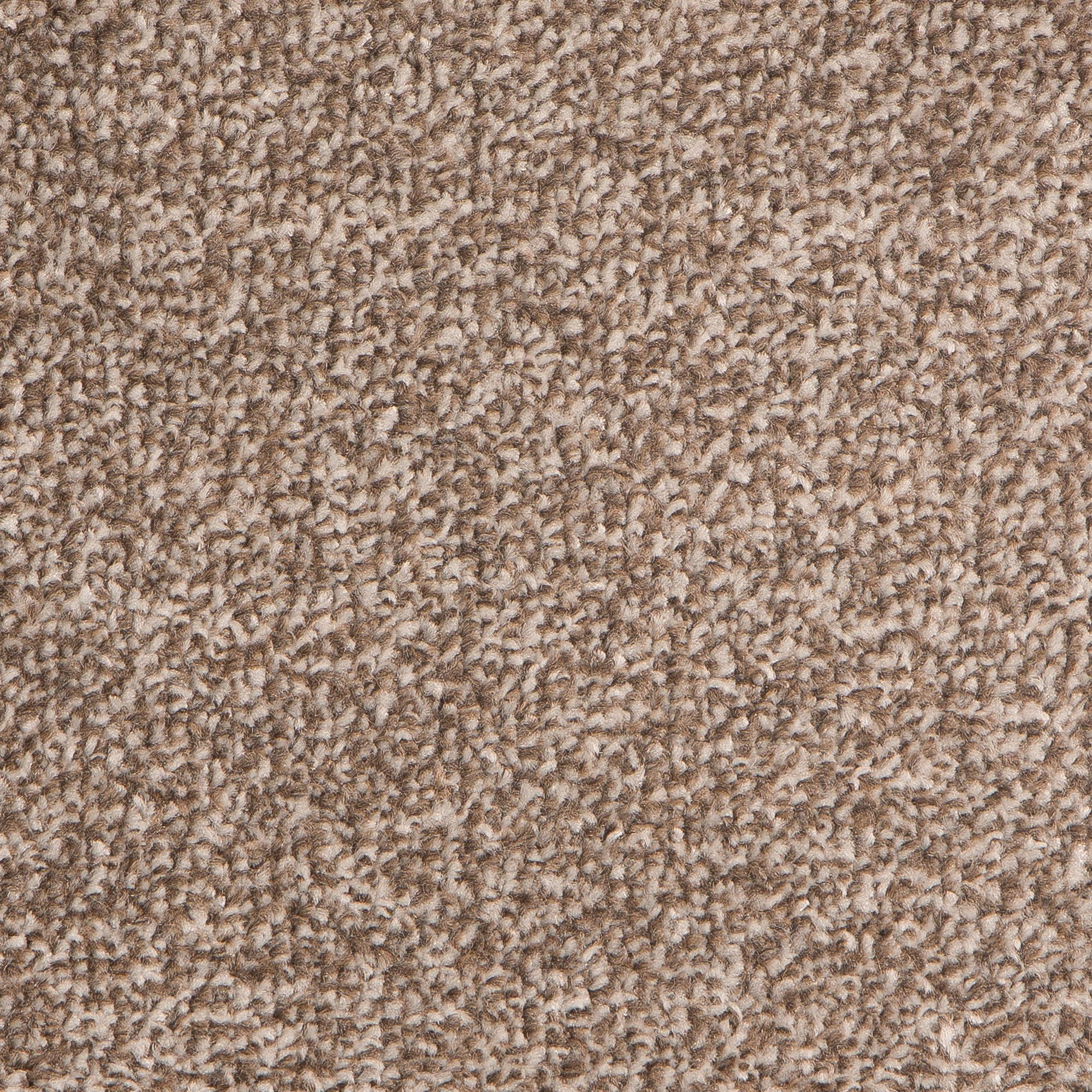 First Time Buyer Epic Carpet, Birch, swatch