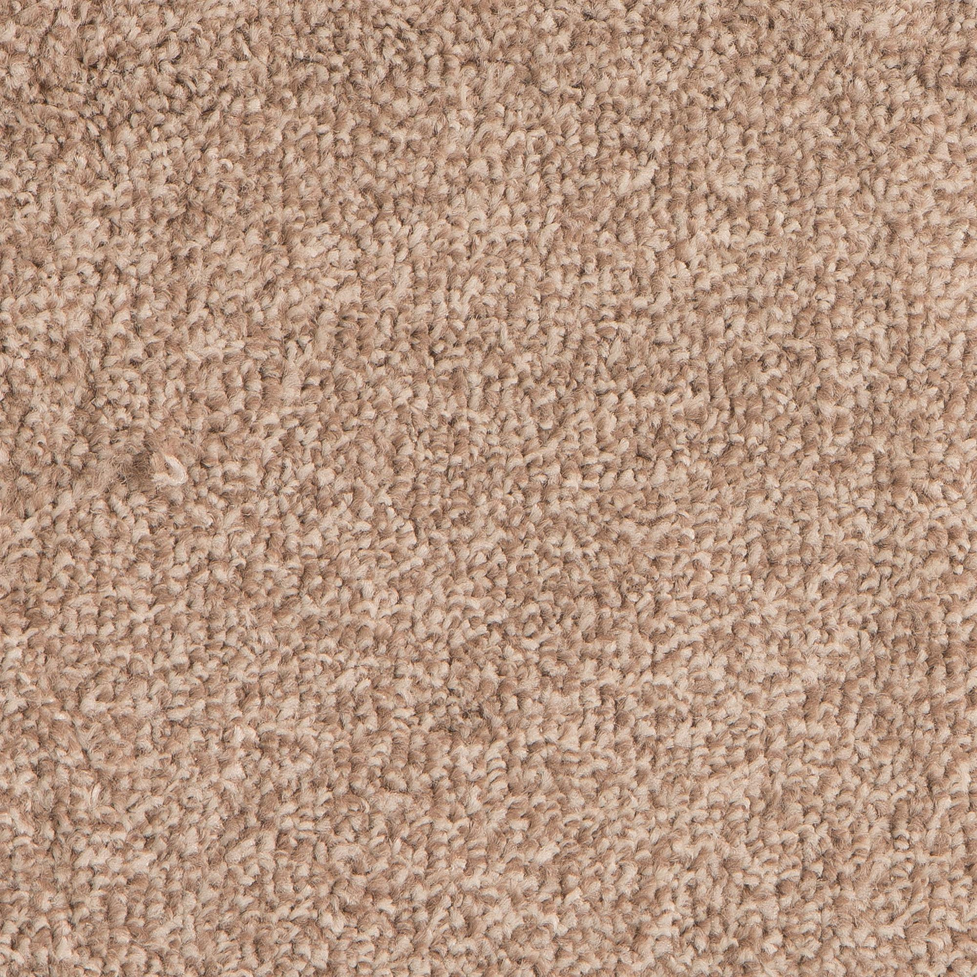 First Time Buyer Epic Carpet, Malt, swatch