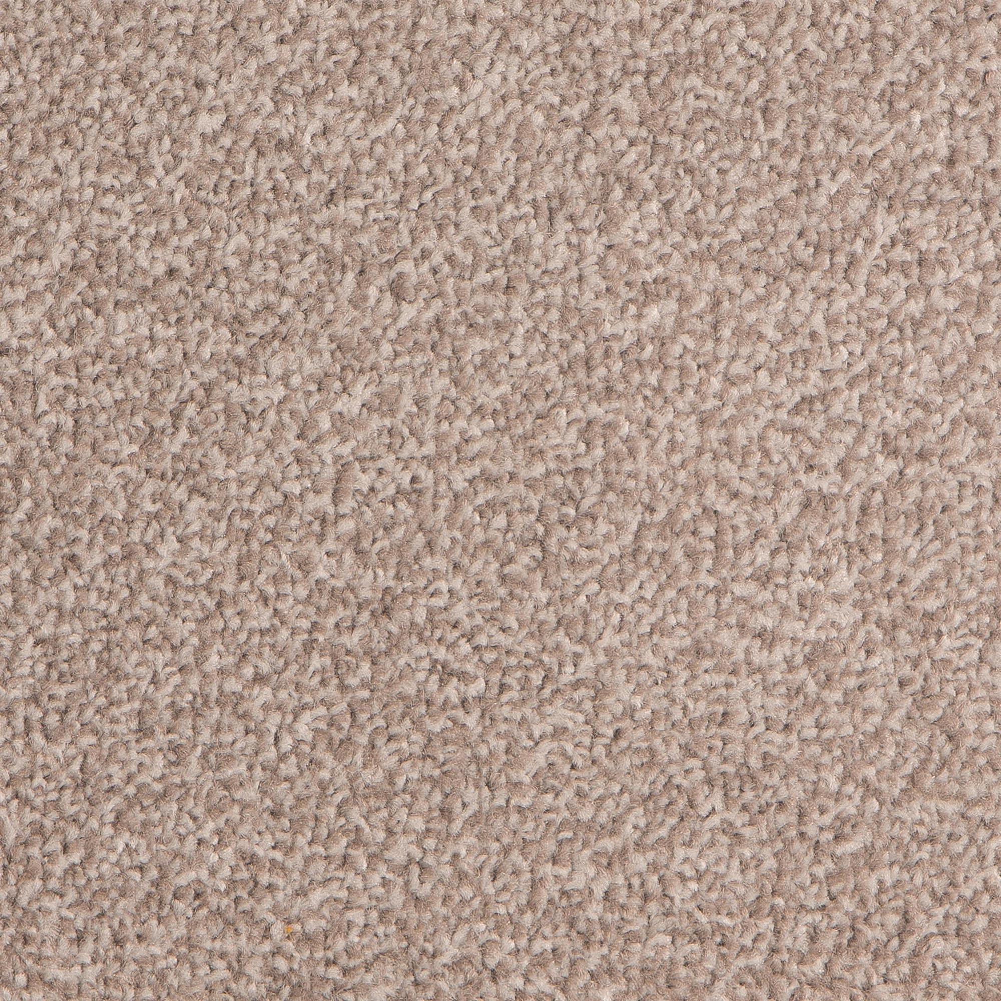 First Time Buyer Epic Carpet, Ash, swatch